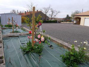 le jardin des écoliers en fleur ✿